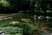The Zagreb botanical garden