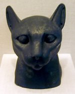 A   used in the burial of a cat  in .
