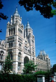 The Natural History Museum in South Kensington, London, has an ornate  facade typical of high Victorian architecture. The carvings represent modern and extinct plants and animals.